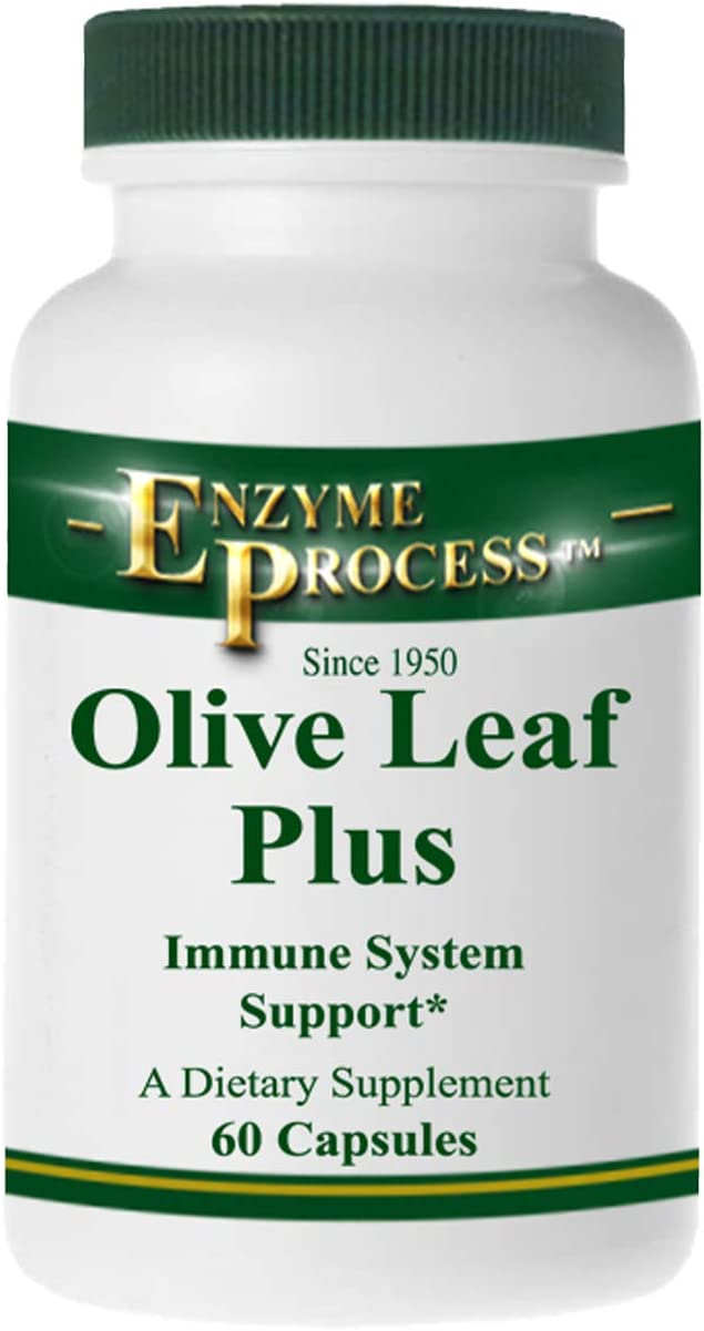 Enzyme Process – Olive Leaf Plus – Herbal Supplement – Immune System Support 60 Capsules