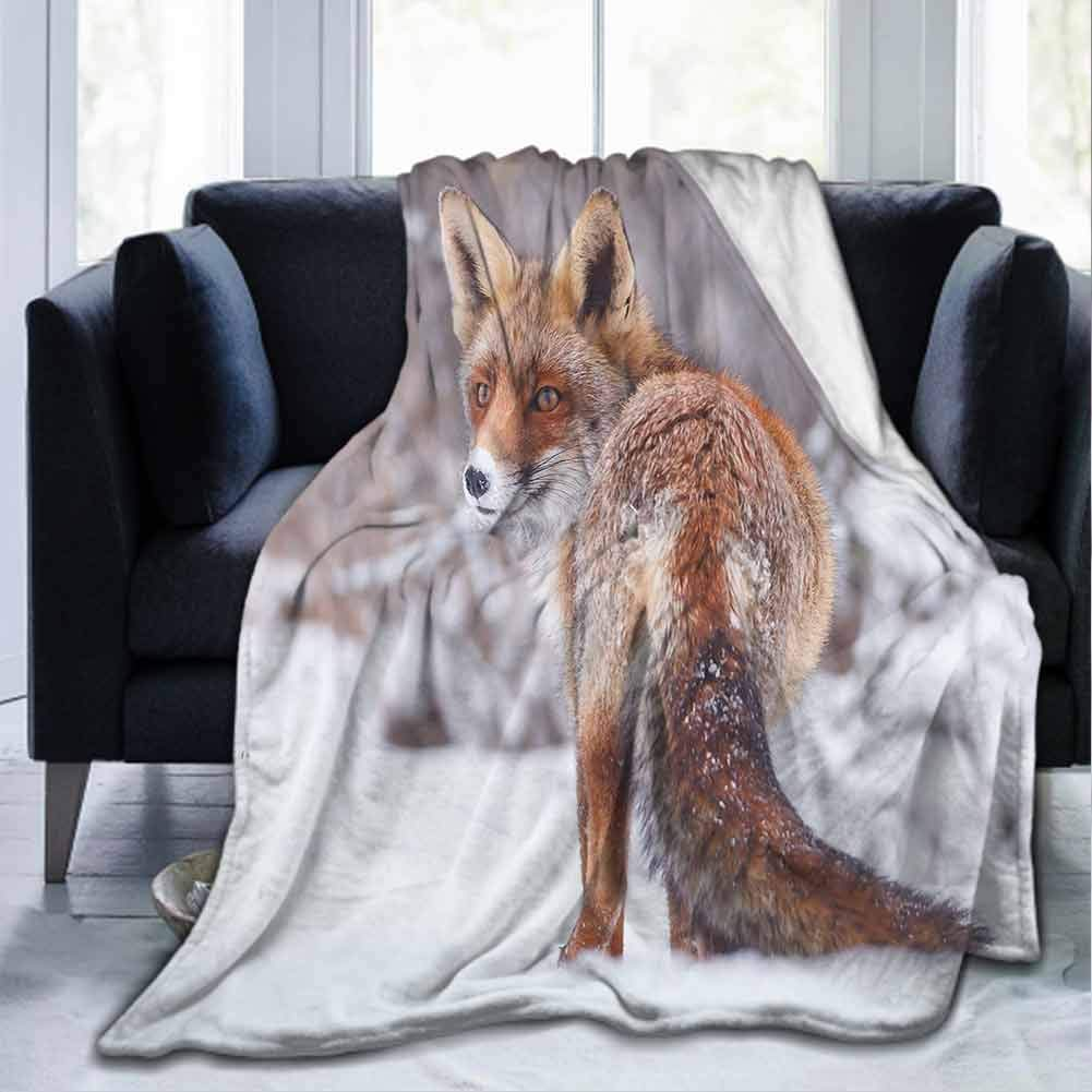 """dsdsgog Flannel Soft Soft Warm Cozy Plush Fox,Countryside Snow Landscape Furry Wild Animal Hunting Vulpine Cold Winter Print,Redwood Brown White,40""""x50"""" for Kids Adults Baby Toddler Dog Cat"""