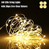 Ehome 100 LED 33ft/10m Starry Fairy String Light, Waterproof Decorative Copper Wire Lights Indoor, Bedroom Festival Christmas Wedding Party Patio Window USB Interface (Warm White)