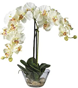 Nearly Natural 4643-WH Phalaenopsis with Glass Vase Decorative Silk Flower Arrangement, White