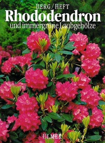 Rhododendron und immergrüne Laubgehölze