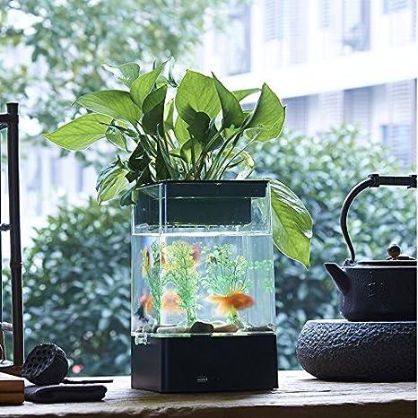 Multifunción Acuario – Maceta Cubic transparente Auto Planta Sistema de Riego de oficina Mesa DIY Clear