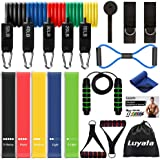 LUYATA Resistance Bands, 19pcs Workout Bands Resistance Bands Set with 5 Stackable Exercise Bands with Handles, 5 Resistance Loop Bands, Ankle Straps,Jump Rope, Door Anchor,Carry Bag, Exercise Towel