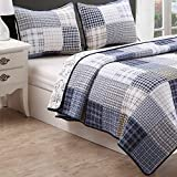 Cozy Line Benjamin Plaid Quilt Sets Reversible Dinosaur Pattern 2-Pcs, Twin Size for Boys