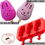 DiDaDi Silicone ICE POP Mold, 3 Cavities Cute ICE CAREM Bar Mould,Popsicle Molds DIY ICE Cream Maker,Silicone Jelly Chocolate Candy Soap Molds 20 Wooden Sticks - Bunny