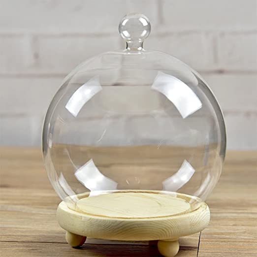 Siyaglass Clear Glass Cloche Globe Display Dome with Black Wooden Base 4.6 x 11 inch