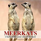 Meerkats - Charismatic and Clever Animals 2017: Funny and Clever Fellows from Africa (Calvendo Animals)