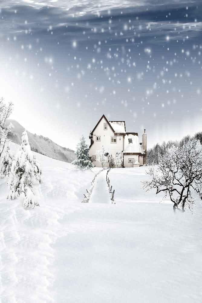 GladsBuy Snowy Sky 6 x 9 Digital Printed Photography Backdrop Christmas Theme Background YHA-562