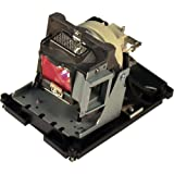 GOLDENRIVER BL-FU310B Professional Projector Replacement Lamp with Housing and Original Bulb for Optoma DH1017/EH500/X600