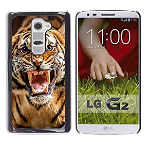 Qstar Arte & diseño plástico duro Fundas Cover Cubre Hard Case Cover para LG G2 / D800 / D802 / D802TA / D803 / VS980 / LS980 ( Roar Tiger Stripes Wild Animal Nature)