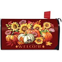 Briarwood Lane Fall Beauty Floral Magnetic Mailbox Cover Welcome Autumn Standard