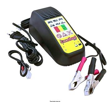 Accugard – Cargador de batería para moto y Scooter, 12 V ...