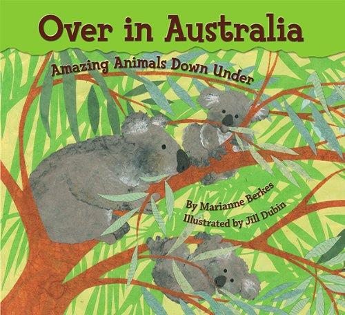 Over Animal - 4