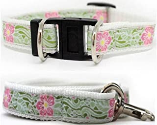 product image for Diva-Dog 'Maui' Dog Collar with Safety Buckle