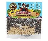 300 Live Ladybugs - Good Bugs - Ladybugs