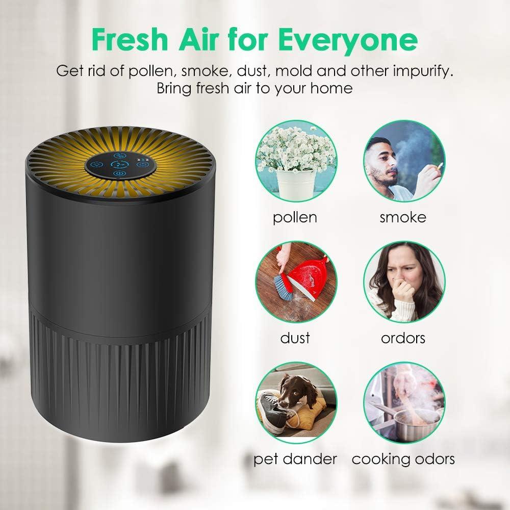 Purificador de Aire con Filtro HEPA, Filtración de 4 Etapas ...