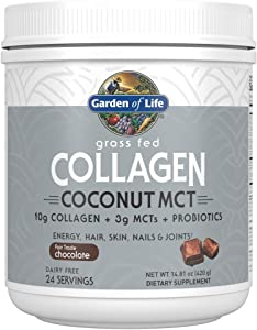 Garden of Life Grass Fed Collagen Coconut MCT Powder - Chocolate, 24 Servings, Collagen Peptides Powder for Energy Hair Skin Nails Joints, Coconut MCTs, Probiotics, Collagen Protein Powder Supplement