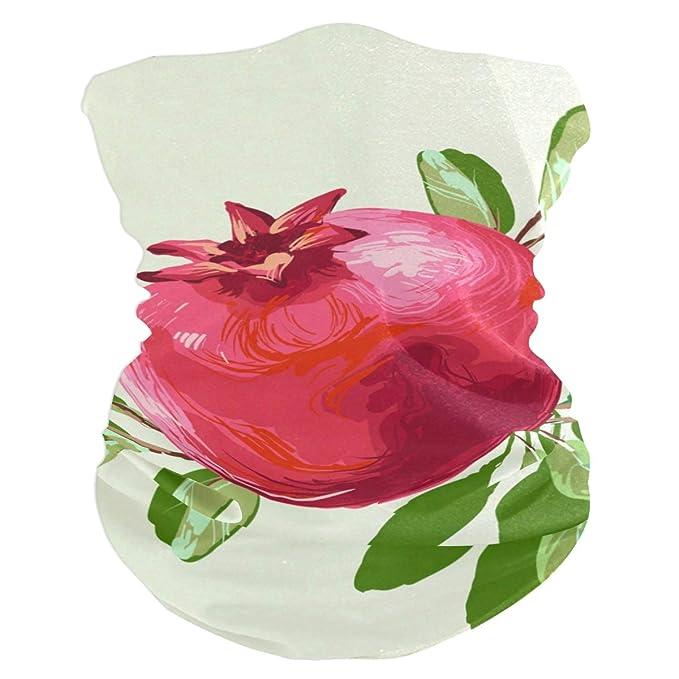 Rojo Pintado Semillas de Granada Fruta Elástica Cintas la Cabeza ...