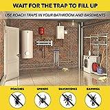 Harris Roach Glue Traps, Pesticide Free