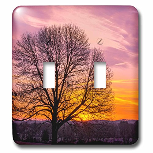 Danita Delimont - Sunrise - USA, Pennsylvania, King of Prussia. Tree silhouette at sunrise. - Light Switch Covers - double toggle switch - King Outlet Of Prussia