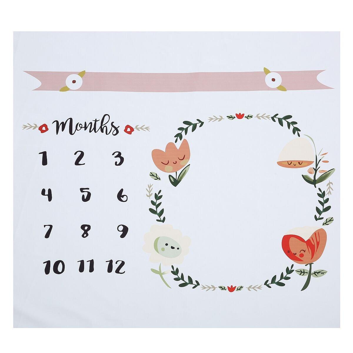 aissimio Baby Monthlyマイルストーン毛布新生児背景写真小道具撮影写真バックドロップホワイト100 x 100 cm   B077GVQKGL