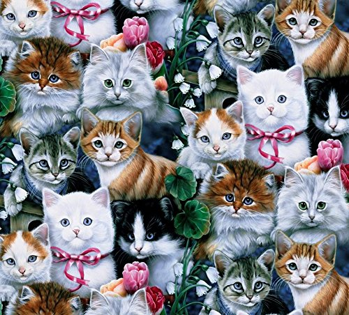 Kittens & Cats are Ready to Meow Cotton Fabric by The Yard