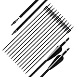 D&Q Aluminum Arrows 31 Inch with Fletched 3 Inch Feather Vane Screw-in Field Points Replaceable Tips Adjustable Nocks for Recurve Compound Bow Longbow Hunting Shooting Target Practice (Pack of 12)