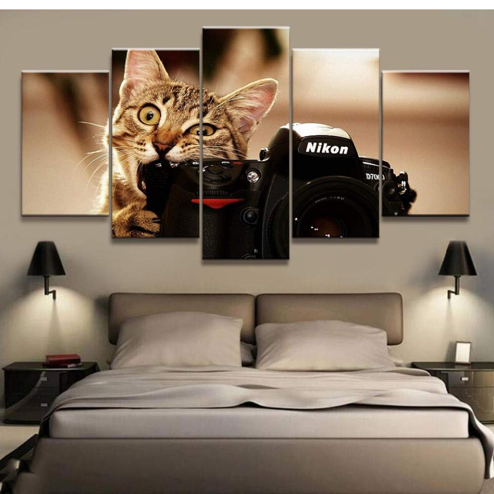 woplmh Stampa Artistica Live Wall HD Poster 30x40cmx2 30x60cmx2 30x80cmx1 5 Pezzi Gatto e Macchina Fotografica Tela Animale Quadro Quadro Moderno Nessuna Cornice