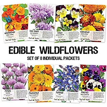 Collection of 8 Edible Wildflower Seed Packets (8 Individual Packets) Non-GMO Seeds by Seed Needs