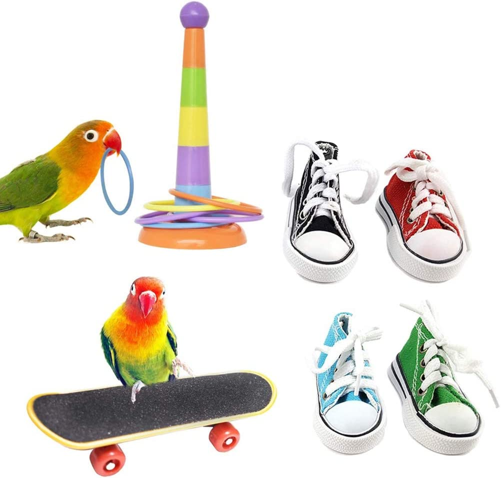 KJ-KUIJHFF 6Pcs Parrot Training Toys Mini Sneaker Skateboard Intelligence Training Rings Set Parakeet Cockatiel Entertainment Pet Supplies