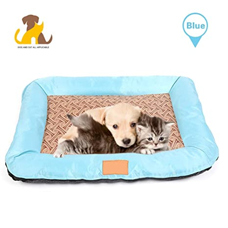 Amazon.com: Nwayd Camas para perros, gatos, camas para ...