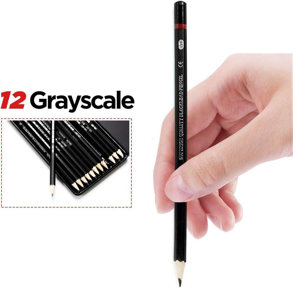 8B-2H Professional Sketch and Drawing pencils set,Art Pencil 12-Count .