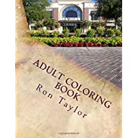 Adult Coloring Book: Color Fountains, Street Scenes and Buildings for Fun and Relaxation (Amazing Coloring Books for Adults) (Volume 1)