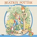 img - for Beatrix Potter 2018 12 x 12 Inch Monthly Square Wall Calendar, Children Book The Tale of Peter Rabbit book / textbook / text book