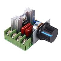 TOPINCN Regolatore di Velocità Tensione Variatore Temperatura, Regolatore di velocità del motore regolabile AC 50-220V 2000W SCR