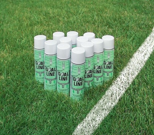 Athletic Paint White - 20 Ounce Cans - Pack of 12