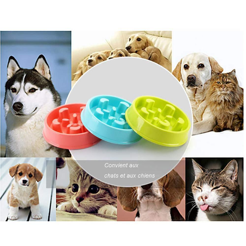 Cxssxling Comedero Perro Antivoracidad Antideslizante Perros Peque/ños Antivoracidad Cuenco Lenta Taz/ón Anti-Gulping Mascotas