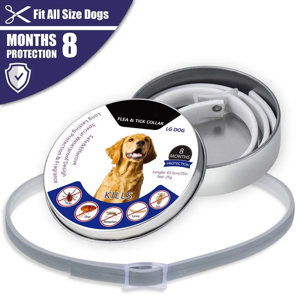 HuhuswwBin - Collar Ajustable para Gato y Perro, antipulgas y Mosquitos, protección Exterior para Mascotas: Amazon.es: Productos para mascotas