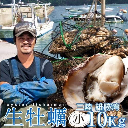 牡蠣 生がき[S]10kg 生牡蠣 殻付き 生食用 宮城県産 雄勝湾 漁師直送 生ガキ 焼きカキ BBQバーベキュー