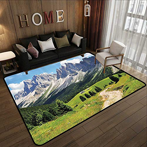 Silky Smooth Bedroom Mats,Farmhouse Decor,Winding Path into Pine Tree Forest Meadows and Mountain Scenery Print,Green White Blue 47