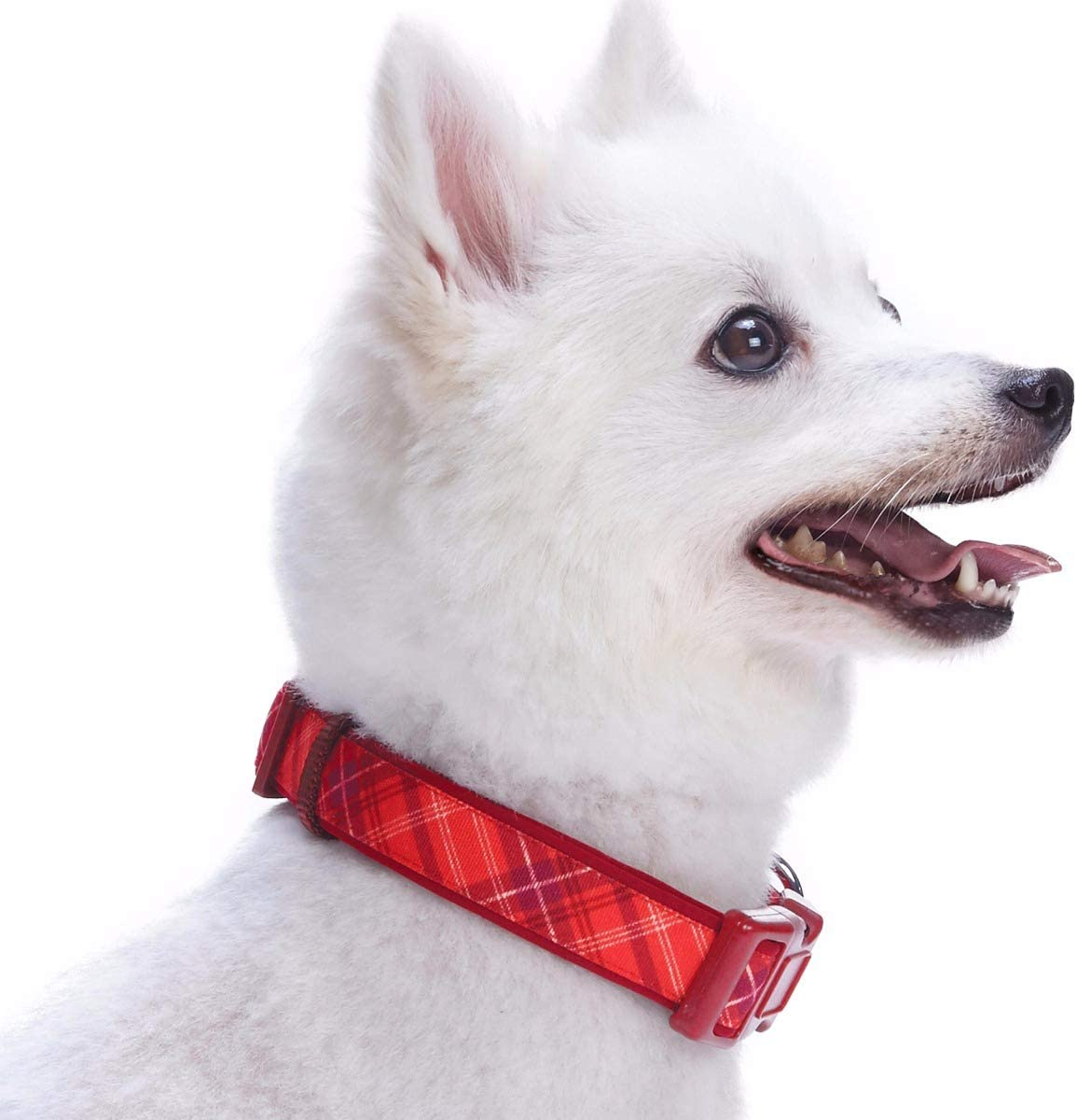 Blueberry Pet Blue Hue Scottish Plaid Style Tie Dog Collar Adjustable Collars for Dogs Neck 14.5-20 Medium