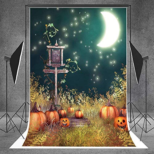 L2G 5ftX7ft (150cmX220cm)Photography Backgrounds Horror Trees Trail Halloween Themed Photo Backdrop for $<!--$42.00-->