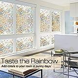 rabbitgoo Window Privacy Film, Rainbow Window