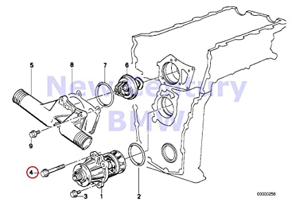 Amazon Com Bmw Genuine Engine Manual Transmission Fillister Head