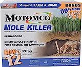 Mole Killers Review and Comparison