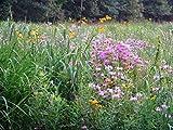 Native Grass Seed Mix,Southeast ,warm & cool-season grasses ,1/2 lbs/1,000 sqft(5 lbs)