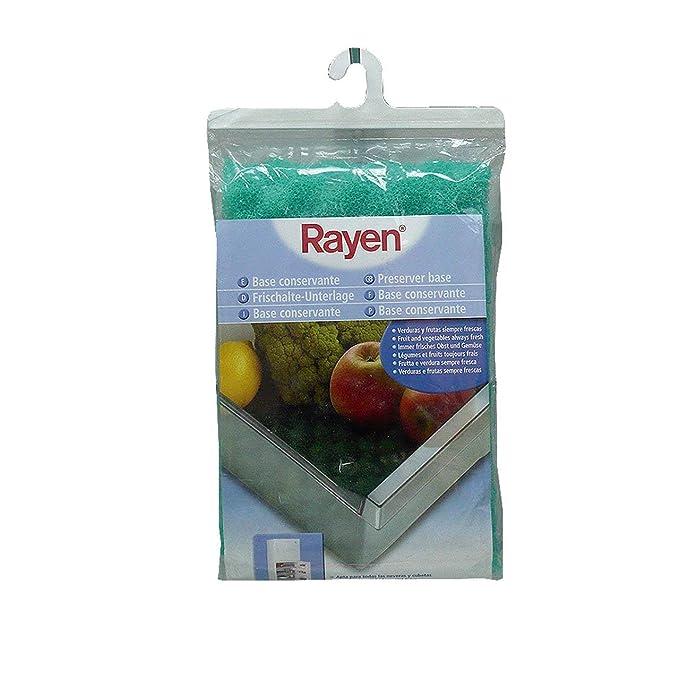 Rayen 6313.50 - Base conservante para Nevera: Amazon.es: Hogar