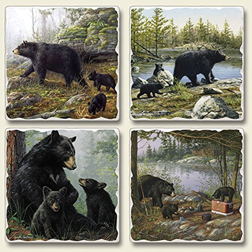 Black Mother Bear Baby Cubs Keeping Watch Woodlands Absorbent Coasters Set of 4