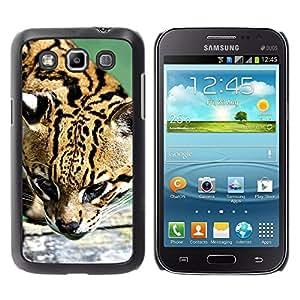 Paccase / SLIM PC / Aliminium Casa Carcasa Funda Case Cover para - Ocelot Feline Hunter Cute Big Cat Wild - Samsung Galaxy Win I8550 I8552 Grand Quattro