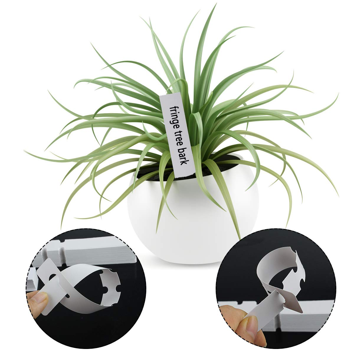 Bantoye 200 Pcs Plastic Plant Labels 100Pcs 8.3 Inch Plant Tree Tags /& 100 Pcs 3.9 Inch Plant Tag Markers for Nursery Garden White